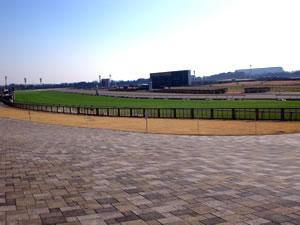 15東京競馬場