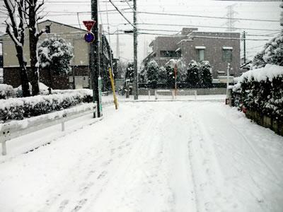 雪201202291