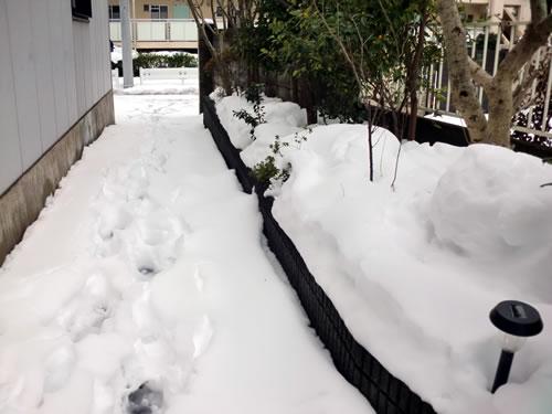 関東甲信越大雪201402153