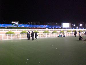 2010東京盃大井競馬場2写真