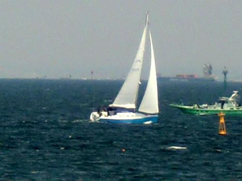 横浜ベイサイドマリーナからの東京湾1