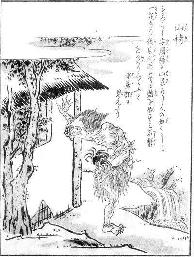 yamanoke