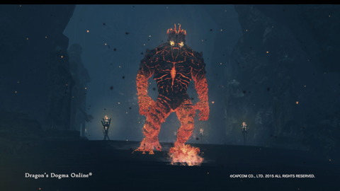 Dragon's Dogma Online__304