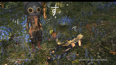 Dragon's Dogma Online__909