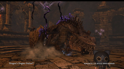Dragon's Dogma Online__251