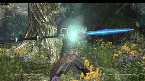 Dragon's Dogma Online__102