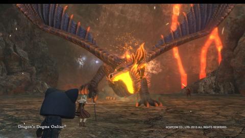 Dragon's Dogma Online__275