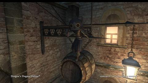 Dragon's Dogma Online__113