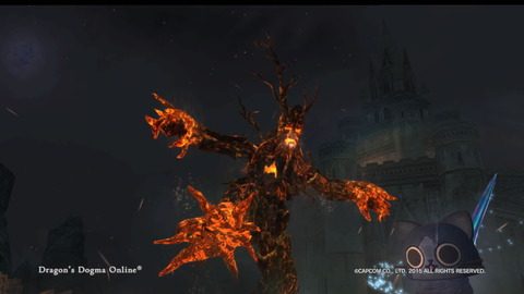 Dragon's Dogma Online__229