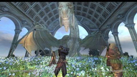 Dragon's Dogma Online__273