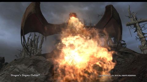 Dragon's Dogma Online__222