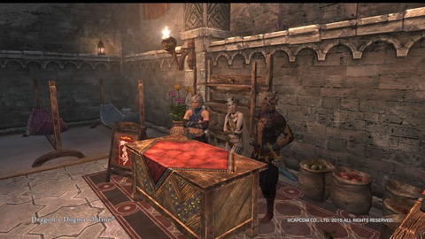 Dragon's Dogma Online__896