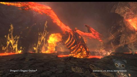 Dragon's Dogma Online__108