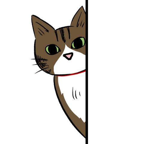 プロフ、猫