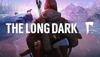 The long dark (3)