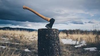 斧 木を切る