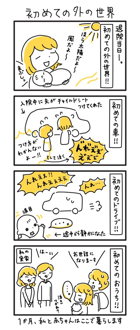 0か月(1)〜(20)