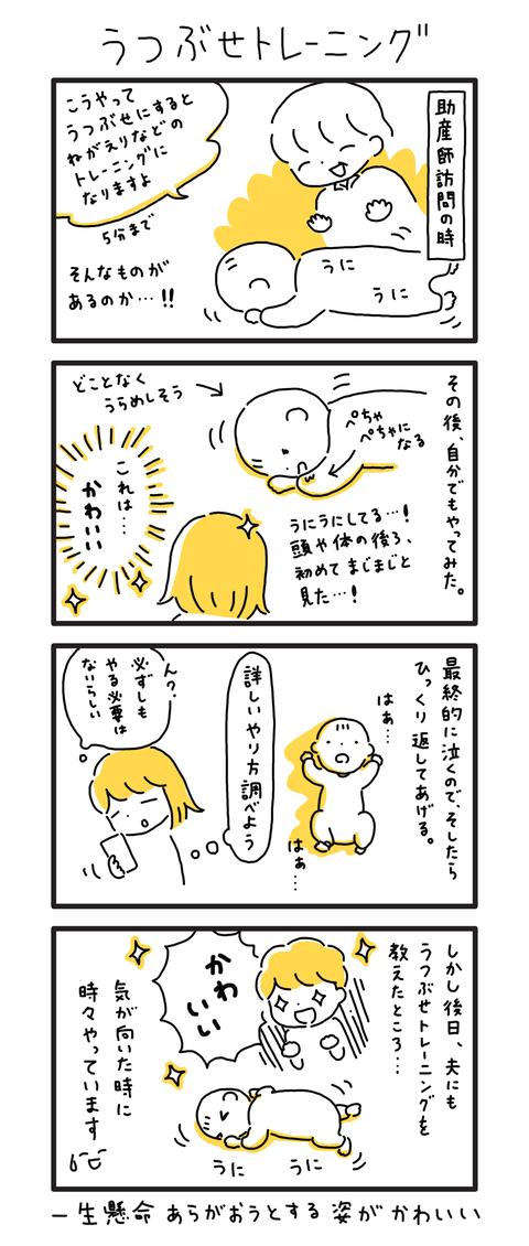 0か月(21)〜(40)