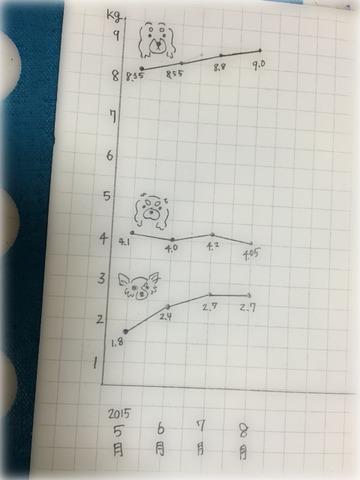 2015.8月体重測定