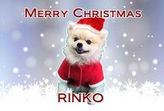 クリスマスサンプル07rinko