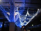 大野クリスマス5