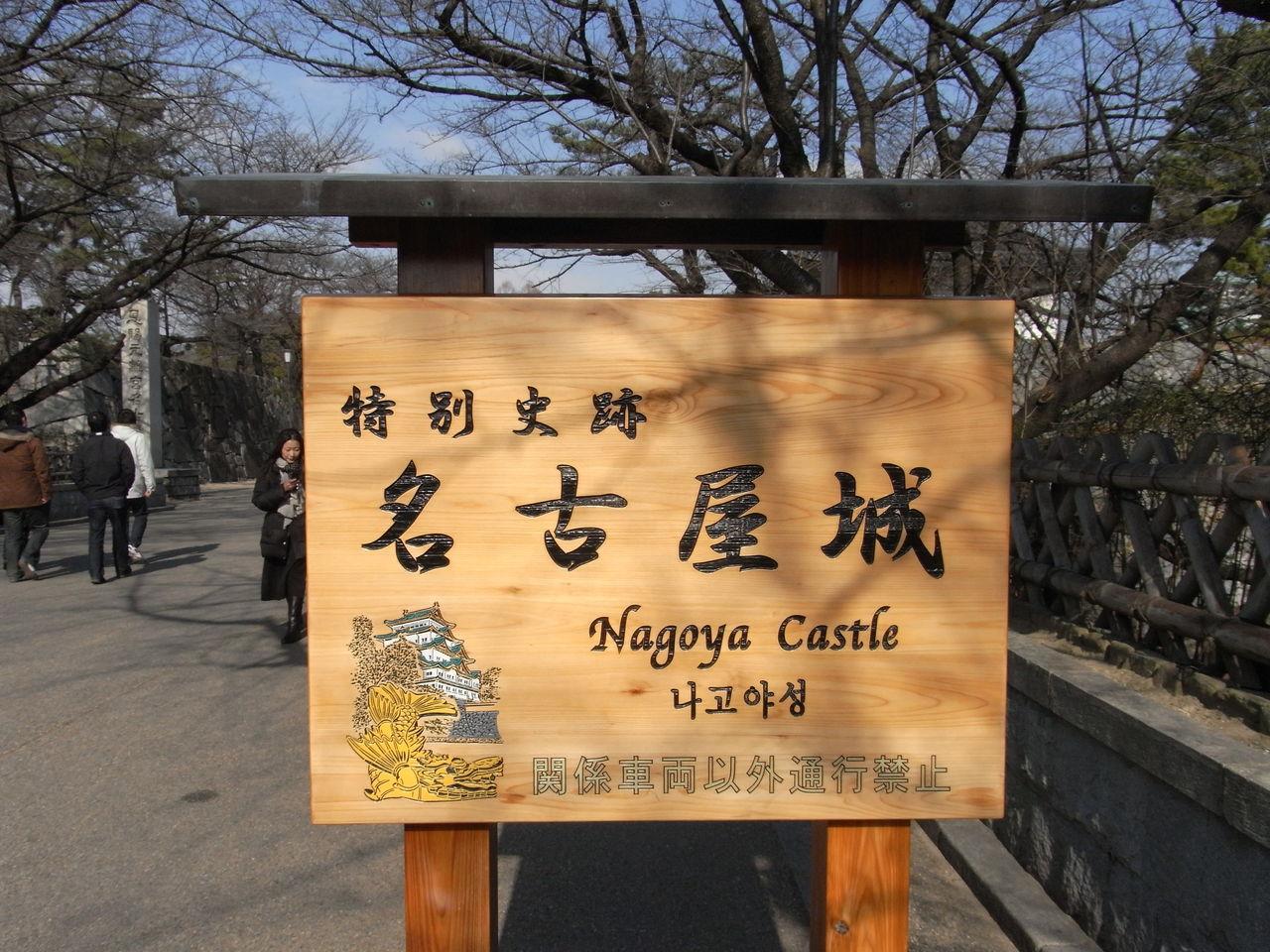 2011伊勢・名古屋 100