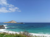 ハワイ景1