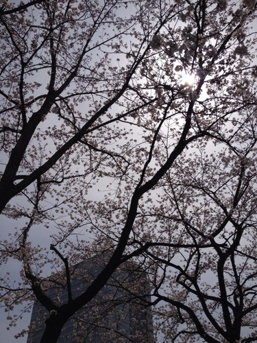 2014-04-01-12-19-39