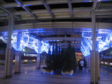 大野クリスマス4