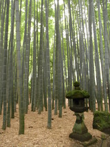 09鎌倉16