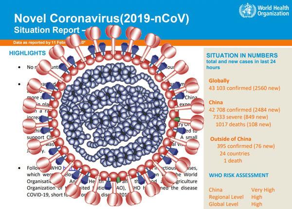 coronavirus_who