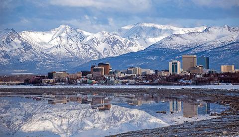 Khám phá động vật hoang dã của Anchorage