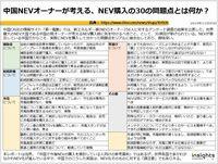 中国NEVオーナーが考える、NEV購入の30の問題点とは何か?のキャプチャー