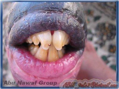 Ikan Mulut Manusia (1)