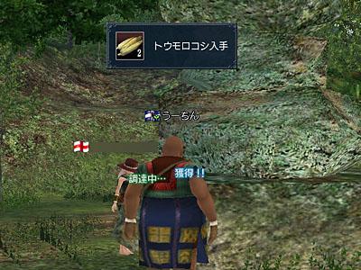 20081106-02.jpg