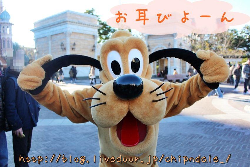 可愛いよー・*・(*´∀`*)・*・