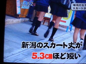 http://livedoor.blogimg.jp/chiriokunijiman-.23/imgs/1/0/10ba0618.jpg