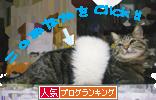 [ 人気Blog Ranking ]