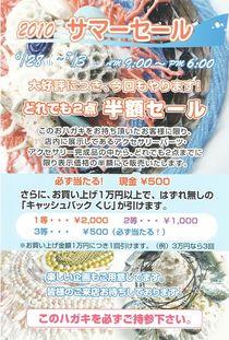 全日本象牙卸売センター2010サマーセールDM