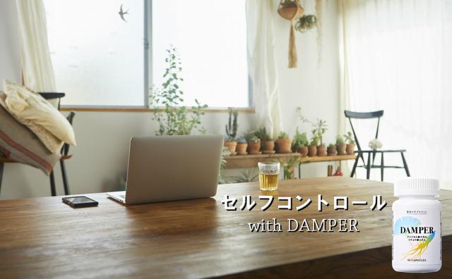 DAMPERアマゾン用3