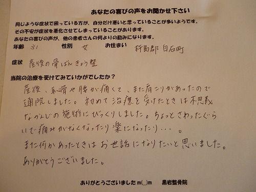 2011_1017_130012-P1000262