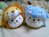 ゾウたんとライオンたん♪