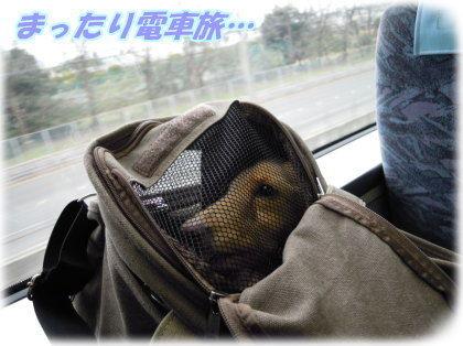 京阪乗る人、おけいはん。