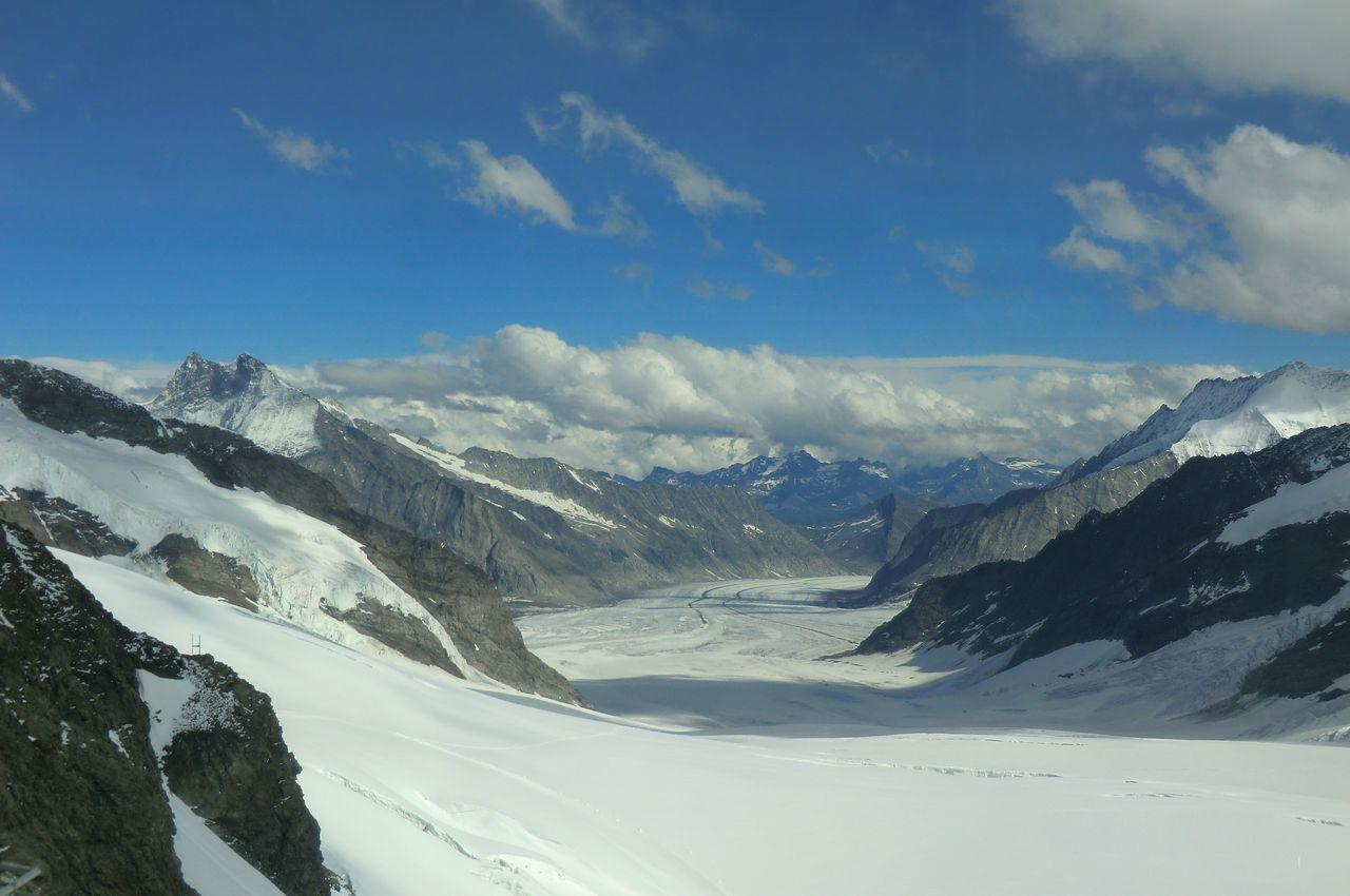 アレッチ氷河の画像 p1_33