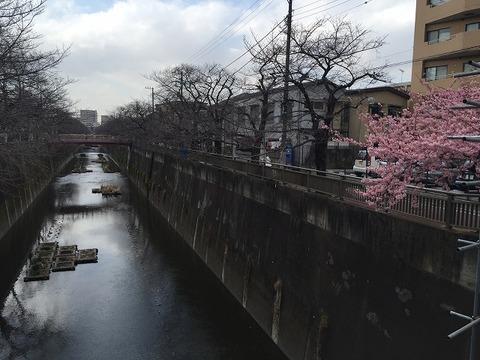 写真 2017-02-20 13 19 43