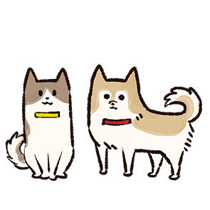 ヘッダーサブ03犬fix