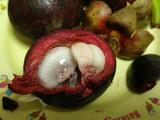 ダイエット食品ダイエットフルーツ マンゴスチン2