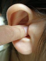 耳もみダイエット2