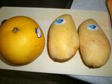 ダイエットジュースレシピ マンゴーグレープフルーツジュース1