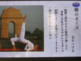 菅野美穂 インドヨガ ヨガ ポーズ ダイエット5